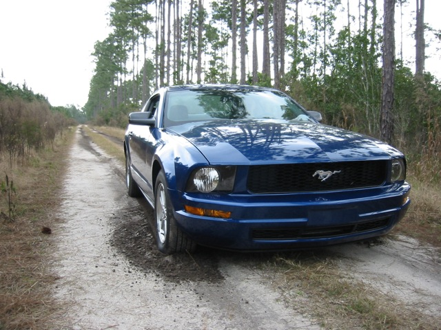 Mustang in Hazzard setting
