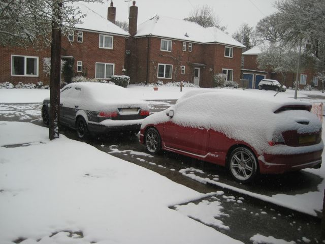 April Snow in Walter's Ash